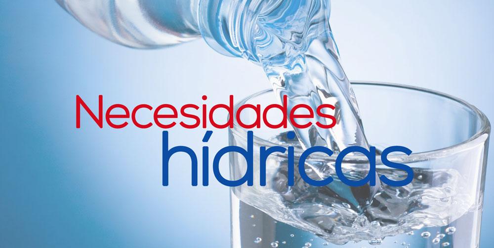 necesidades hidricas diarias