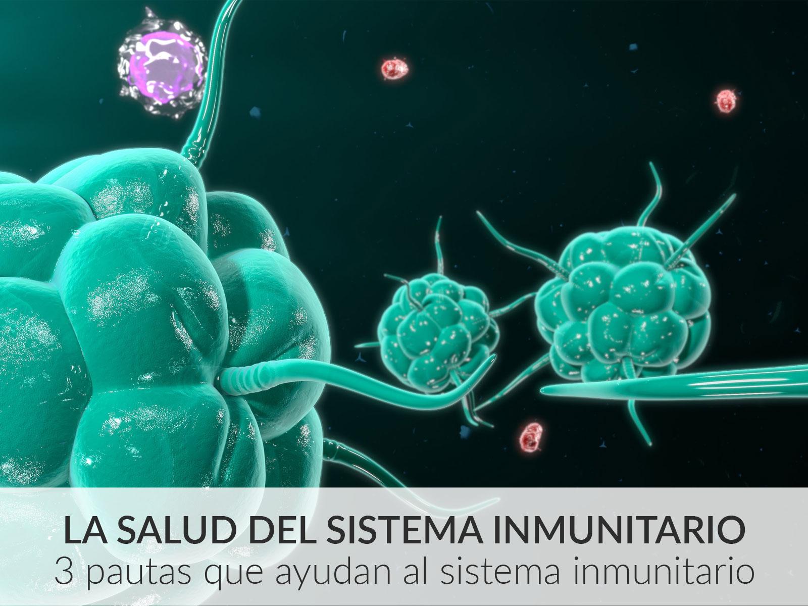 3 pautas que sí ayudan a tu sistema inmunitario